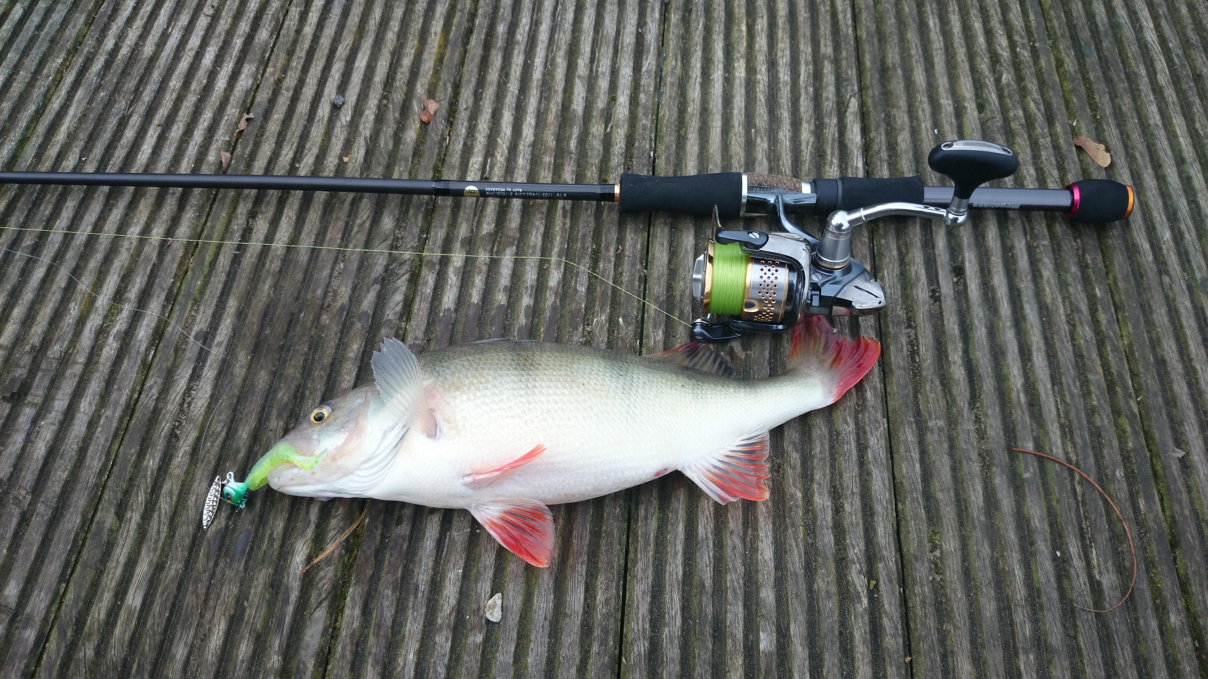 Le blog de Quentin et Marc  Pour tout ceux qui sont fous de pêche aux leurres