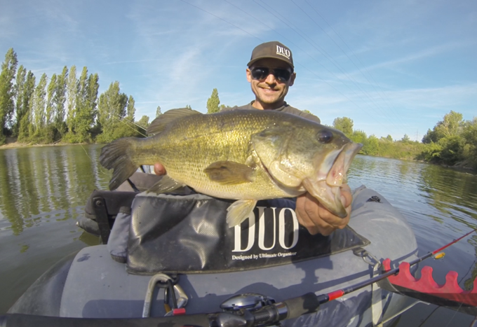 Bass de 45cm VS Vagabond Air Bait Hawg