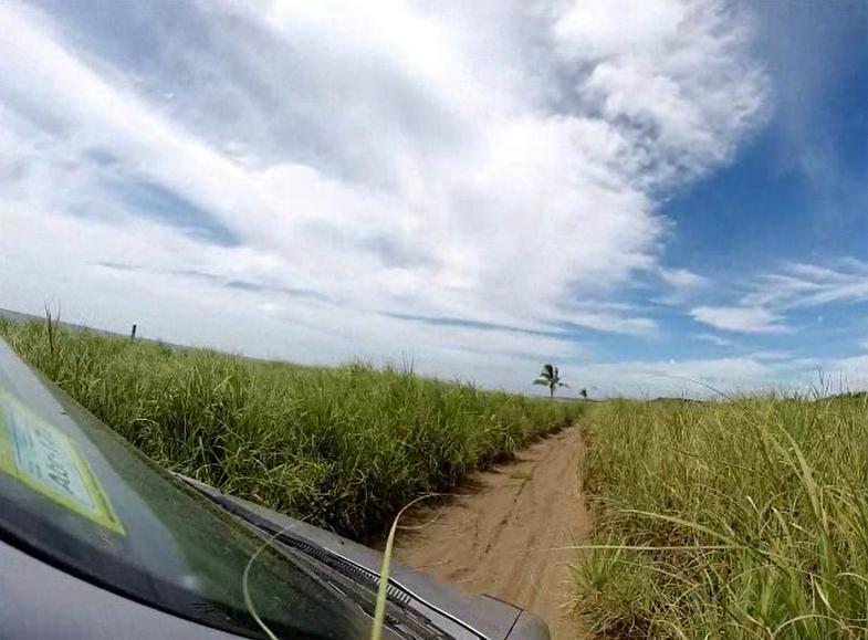 camino-playa-bongo
