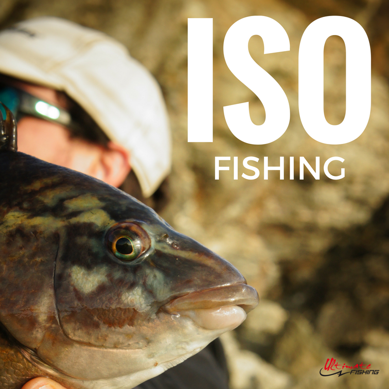 ISO FISHING-2