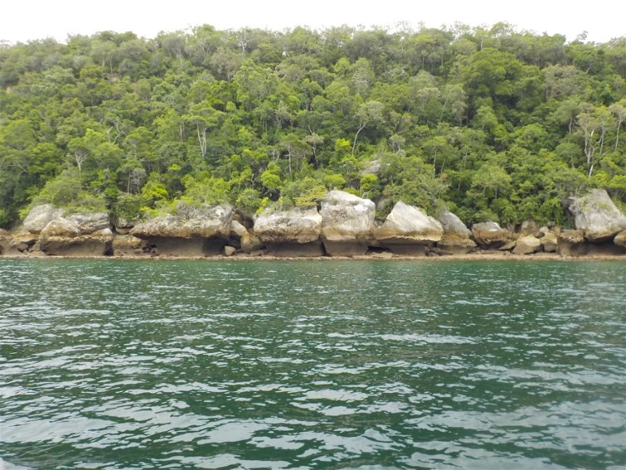 cadre sauvage de la baie de Narinda