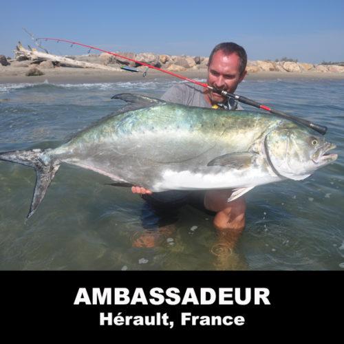 Franck Hiribarne