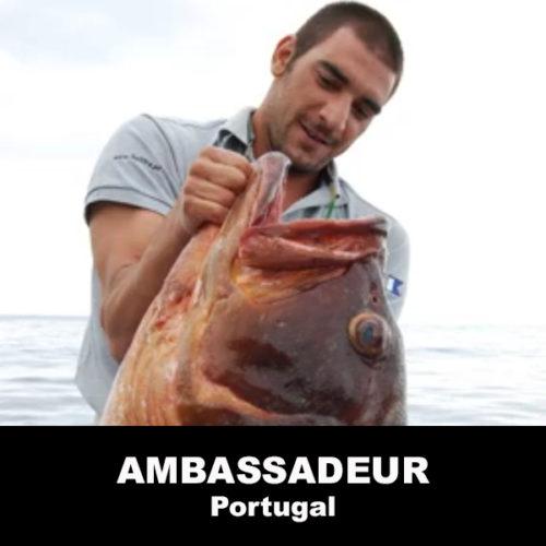 André Domingues