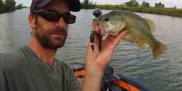 Pêche d'été, pêche de bass !