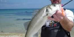 Pêche légère depuis le bord – les conseils d'Alexandre Bigot